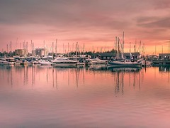Fourteen Days Later (Lindsey1611) Tags: ipswich suffolk ipswichwaterfront sunset golden pink sky boats harbour water clouds boatmasts east anglia reflections neptune marina
