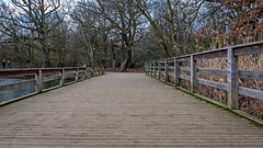 The board walk (PhredKH) Tags: 2470mm canoneos5dmkiii canonphotography connaughtwater ef2470mmf4lisusm epping eppingforest fredkh photosbyphredkh phredkh splendid winter outdoorphotography sky