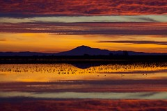Mount Diablo (SkylerBrown) Tags: clouds landscape mountdiablo mountain nature pretty sacramentodelta sunset water