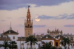 Atardecer en Sevilla (ameliapardo) Tags: atardecer sevilla luna giralda monumentos lunallena nubes cielo fujixt2 fujinon50140