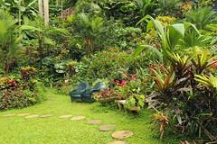 Huntes Garden (www.Barbados.org) Tags: barbados holiday vacation travel