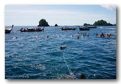 In the blue sea. (natureflower photography) Tags: blue sea scuba diving snorkel sunny day glittering people boats atmosphere ripple
