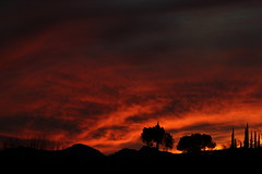 Sunset 3 5 19 #41 (Az Skies Photography) Tags: sun set sunset dusk twilight nightfall sky skyline skyscape rio rico arizona az riorico rioricoaz arizonasky arizonaskyline arizonaskyscape arizonasunset cloud clouds red orange yellow gold golden salmon black march 5 2019 march52019 3519 352019 canon eos 80d canoneos80d eos80d canon80d