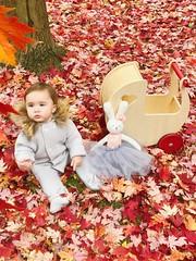 image3 (www.moover.us) Tags: moover moovertoys pram stroller kids kidstoys child toddler woodentoys toy playthings toys designtoys awardwinningtoys cutetoy babytoy baby qualitytoy kidsfasion dollspram doll dollhouse bestgift