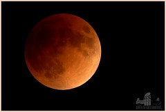Griffith Observatory Image (Bill 2.7 Million views) Tags: tags fullmoonbloodmoon supermoon eclipse 2021 2019 monday sunday moon mooning morning wolfmoon mount hollywood losangeles griffith park observatory educationalpurposesonly