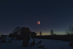 Total lunar eclipse (clemensgilles) Tags: cold snow winter lune lunareclipse moonlight astrophotographers astrofotographie nightphoto nachtfotografie longexposure deutschland eifel germany beautiful