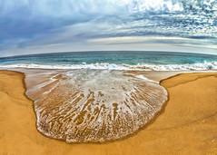 Scallop shell wave. (Cordia Loretta) Tags: beach sea water atlanticocean rocks fence seagrass clouds blue sky sand fog autumn summer rhodeisland eastbeach charlestown misquamecut longislandsound wildlife ocean sunset sunrise usa