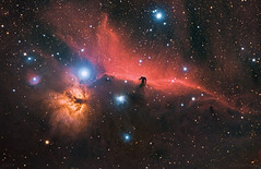 horsehead nebula -  IC 434 (cfaobam) Tags: ic434 skywatcher baader pixinsight astronomie deepsky deutschland germany astrophotography astrophoto astrofoto bayern astrofotografie cfaobam astronomy telescope teleskop horsenebula pferdekopfnebel celestron ed80 odenwald obernburg ngc2024 barnard33 zwoasi asi183 horse nebula esprit80