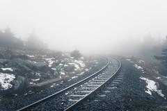 Schienenkurve (Gruenewiese86) Tags: 2018 harz hütte november sony a6500 wald forest forestscape fog nebel angst tod tot geheimnisvoll mystisch mystical germany holz baum himmel landstrase
