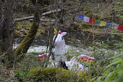 Unicorns are real! (rozoneill) Tags: sterling mine ditch trail ruch jacksonville oregon hiking blm little applegate river