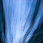 Blue movement thumbnail