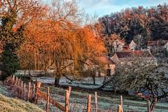 Noël à La Contarie (Isa-belle33) Tags: landscapes landscape tree trees arbre arbres campagne light sunrise soleil givre gel house maison old ancien fujifilm