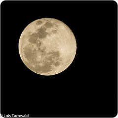 February's Supermoon (11Jewels) Tags: canon 70300 february supermoon snowmoon squareformat