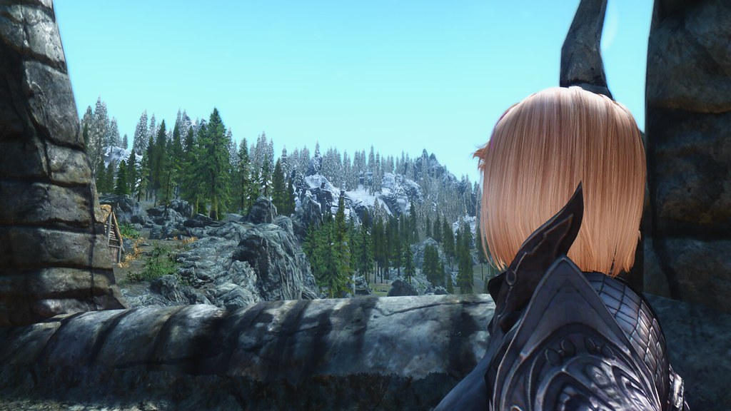 The World's most recently posted photos of armor and skyrim