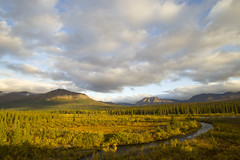 Cantwell, AK (JR-pharma) Tags: alaska usa united october northwest north west automne fall states america roadtrip road trip photoroadtrip hiking hike 2015 french français nature aventure liberty liberté canoneos6d canon6d mark 1 canon eos 6d classic jrpharma