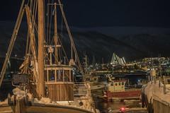 Tromsö 2019 (482 von 699) (pschtzel) Tags: 2019 nordlicht tromsö