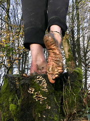 Natural toughness (Barefoot Adventurer) Tags: barefoot barefooting barefooter barefoothiking barefeet baresoles barefooted barfuss muddysoles muddyfeet muddy mud wrinkledsoles winterbarefooting winter anklet arches ankles connected callousedsoles callouses earthsoles earthing earthstainedsoles earth energy healthyfeet hiking happyfeet hardsoles heelcracks ruggedsoles livingleather