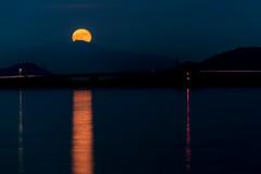 赤い月昇る ー The red moon rose (kurumaebi) Tags: yamaguchi 秋穂 山口市 nikon d750 nature landscape autumn 秋 sky 空 月 moon night 夜