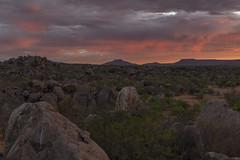 _RJS3542 (rjsnyc2) Tags: 2019 africa d850 himba landscape namibia night nikon outdoors photography remoteyear richardsilver richardsilverphoto safari sunset travel travelphotographer animal camping nature sky stars tent wildlife