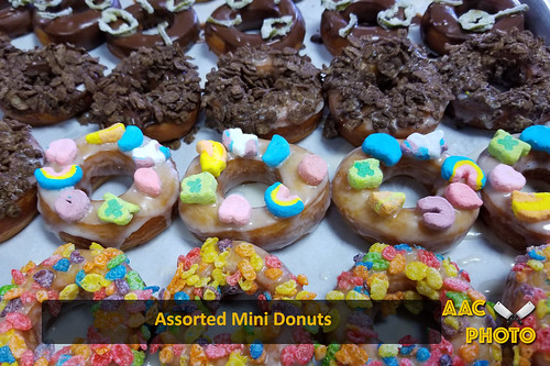 "Assorted Mini Donuts • <a style=""font-size:0.8em;"" href=""http://www.flickr.com/photos/159796538@N03/40034465623/"" target=""_blank"">View on Flickr</a>"