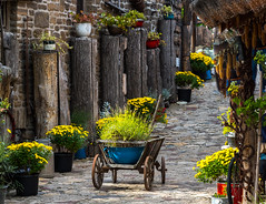 Alley way.  Lake Balaton Region, Hungary (LKungJr) Tags: alley stonestreet flowers path cobblestone colorful