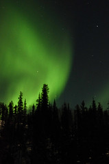 March Madness-156 (juan_guthrie) Tags: yellowknife nwt northernlights