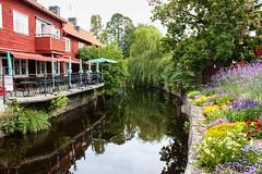 IMG_2902-1 (Andre56154) Tags: schweden sweden sverige eksjö stadt city village haus house holzhaus wasser water fluss river blume flower