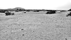 Fuerteventura desert (piotr_szymanek) Tags: fuerteventura outdoor beach sunset blackandwhite sand landscape sea water ocean mountains 1k 20f 5k