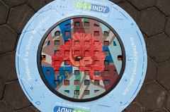 Indy Flower Manhole Cover (Bracus Triticum) Tags: indy flower manhole cover indianapolis インディアナポリス indiana インディアナ州 unitedstates usa アメリカ合衆国 アメリカ 8月 八月 葉月 hachigatsu hazuki leafmonth 2018 平成30年 summer august