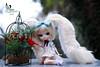 One Wish (dreamdust2022) Tags: lillipop sweet cute charming playful shy innocent beautiful giggles hug kiss dreamer magical tender young bunny girl doll yeolume