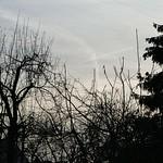 P2240454 thumbnail