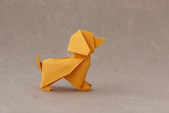Joe Cocker by Patricio Kunz Tomic (ronatka) Tags: origami tant tantpaper ef50mmf14usm dog joecocker patriciokunz
