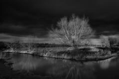 Dark clouds (paullangton) Tags: hertford hertfordshire river tree bw mono monochrome blackandwhite landscape longexposure clouds sunset contrast leefilters nature field flow light reflections skancheli