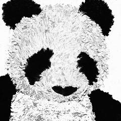 Panda incognito #mask #ThroughHerLens (7 Blue Nights) Tags: mask lookingcloseonfriday blackandwhite bw mono monochrome face portrait panda bear teddybear black white toy cute 60365 throughherlens rx10