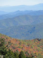 DSC07653 (TerrMys) Tags: northcarolina nc southern appalachians fall autumn october