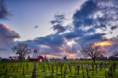 In Between Storms (The Digital Story) Tags: storm landscape stormysky vineyard sonomacounty fujifilm derrickstory barn