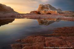 Wet Pocket (David Swindler (ActionPhotoTours.com)) Tags: arizona reflection southwest utah whitepocket whitepockets desert pool rain sunset
