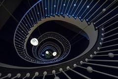 Down to the Xmas-tree ;-) (Elbmaedchen) Tags: spiral stairs stairwell staircase stufen steps treppenhaus roundandround treppenauge treppe escaliers escaleras interior helix rundherum architecture spirale hotel dresden sachsen saxony upanddownstairs