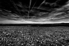 in the garden II (Tom Putzke) Tags: landschaft eifel hohe acht hoheacht clouds himmel sky wolken nrw vulkaneifel erdbeben landscape weite weitwinkel trails arensberg berg hügel