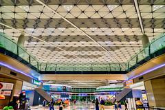 Chek Lap Kok Airport (*Capture the Moment*) Tags: 2017 airport architecture architektur cheklapkok hongkong hongkonginternationalairport midfieldconcourse sonya7m2 sonya7mark2 sonya7ii sonyfe1635mmf4zaoss sonyfe41635 sonyilce7m2