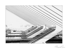 Station (PaquitaSix) Tags: station architecture monochroom monochrome man stears