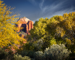 A Peek of Fall (andrewpmorse) Tags: sedona arizona unitedstates southwest fall trees butte cathedralrock desert rock landscape landscapes canon canon5dmarkiv 5dmarkiv 5div 70200mmf28lii leefilters leelandscapepolarizer