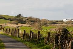 Fenced In Fences (Mark Wasteney) Tags: fencedfriday hff fence fenceline path field grass trees bude cornwall kernow westcountry