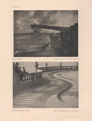annual image