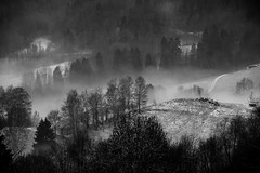 750_6176 (Samimages) Tags: hiver pussy savoie montagne alpes