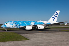 ANA A380 - Flying Honu (Martyn Cartledge / www.aspphotography.net) Tags: a380 aero aerodrome aeroplane air airbus aircraft airfield airline airliner airplane airport allnippon aspphotography avgeek avgeeks aviation cartledge civil civilairline civilairliner flight fly flying flyinghonu flywinglets iflya380 ja831r jet martyn plane runway toulouse transport wings wwwaspphotographynet wwwflywingletscom asp photography