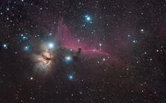 Horesehead Nebula (agavephoto) Tags: astophotography 1610 hydrogen space night sky astronomy nebula dust primefocus b33 horseheadnebula orion horsehead halpha alnitak gas depth farawaythings emission reflection flamenebula sh2227 ic434 ic431 ngc2023 ngc2024 notsquare
