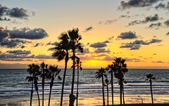 Sunset 23-2-7-19 (rod1691) Tags: sunset oceanside california palmtrees couds surf beach canon