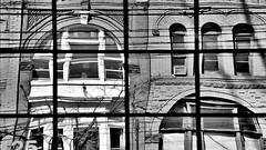 Toronto Reflection (4 b&w) (Carl Campbell) Tags: toronto reflection bw blackandwhite noiretblanc