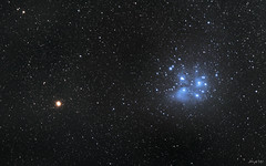 Mars meets Pleiades (abhijitcpatilphotography) Tags: astronomy astro astrophotography stars nebula constellations mars planet universe cosmos starclusters pleiades gascloud dustcloud deepsky